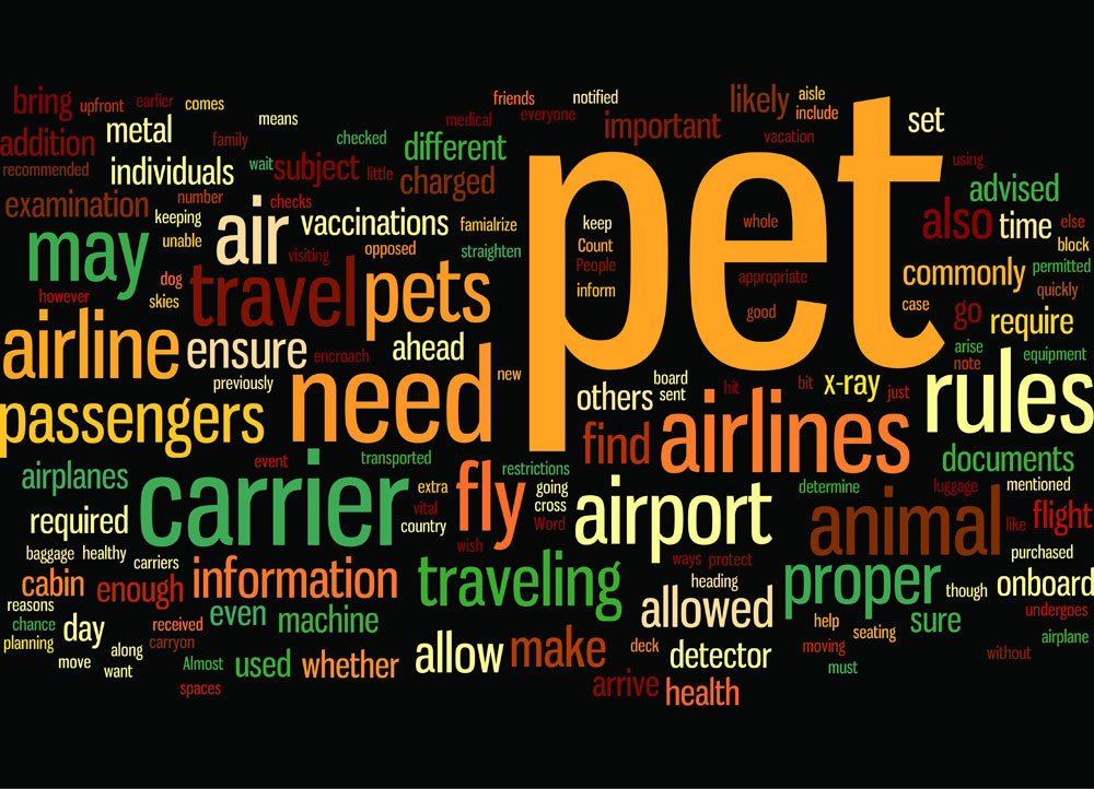 pet owners checklist